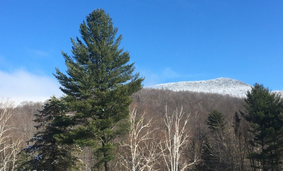 Beautiful Adirondack Mountains - Earth